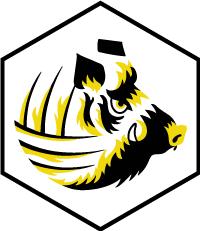 Logo Liffré Football Gaélique
